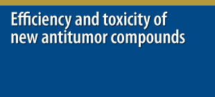 Efficiency and toxicity of new antitumor compounds
